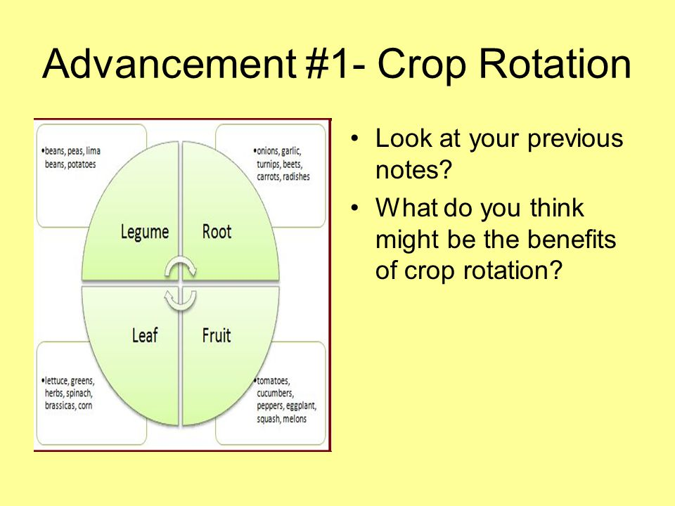 Advancement #1- Crop Rotation Look at your previous notes? What do you think might be the benefits of crop rotation?