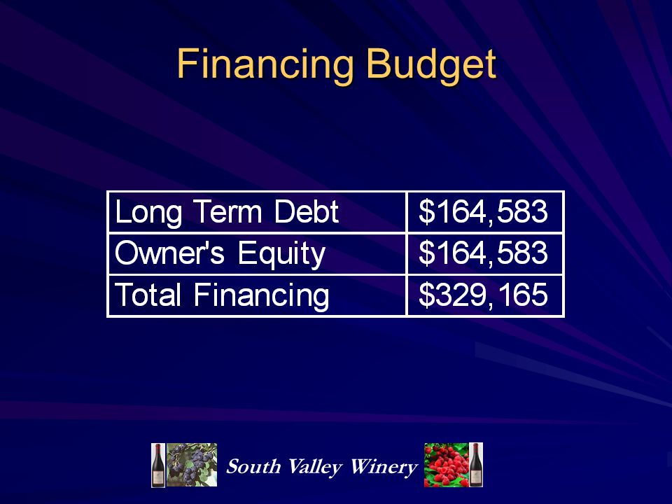 Financing Budget South Valley Winery
