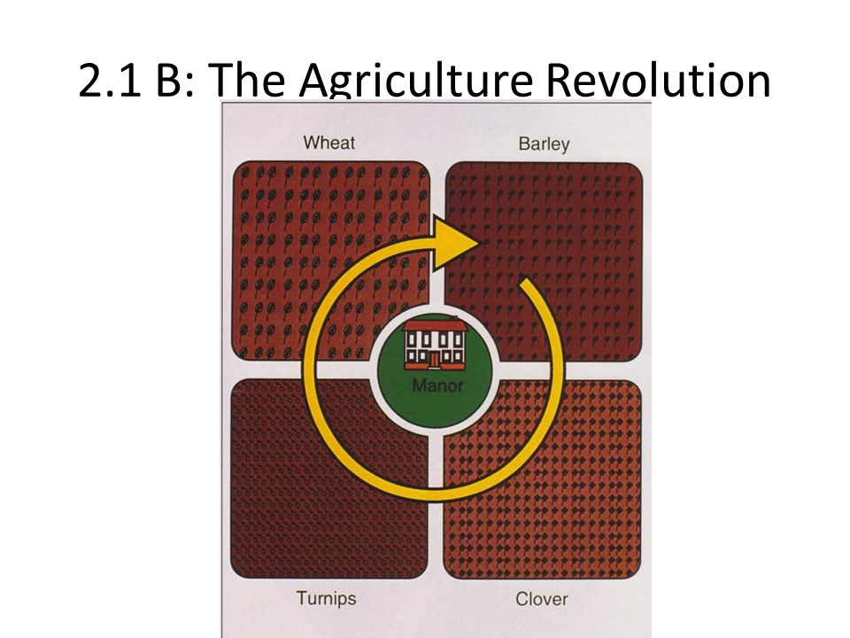 2.1 B: The Agriculture Revolution
