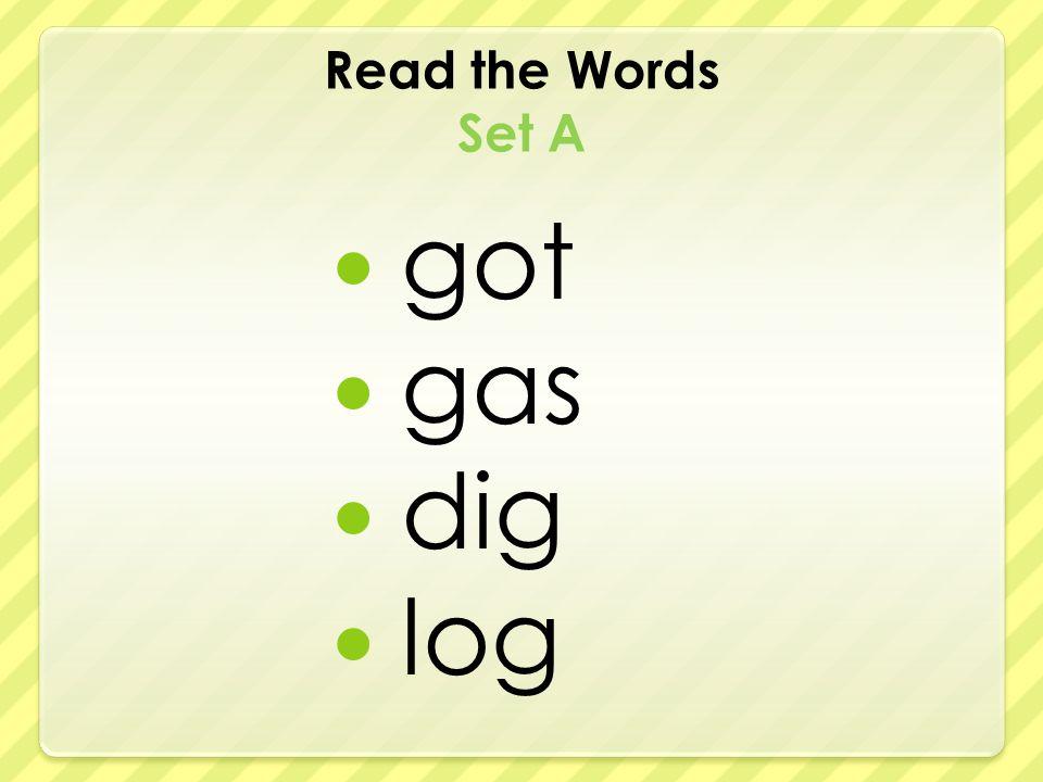 Read the Words Set A got gas dig log