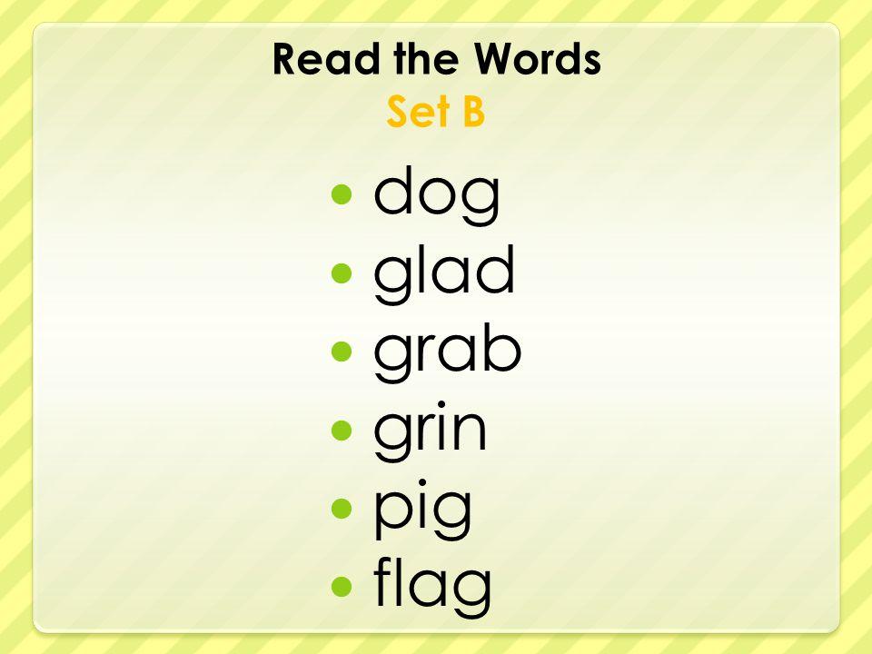 Read the Words Set B dog glad grab grin pig flag