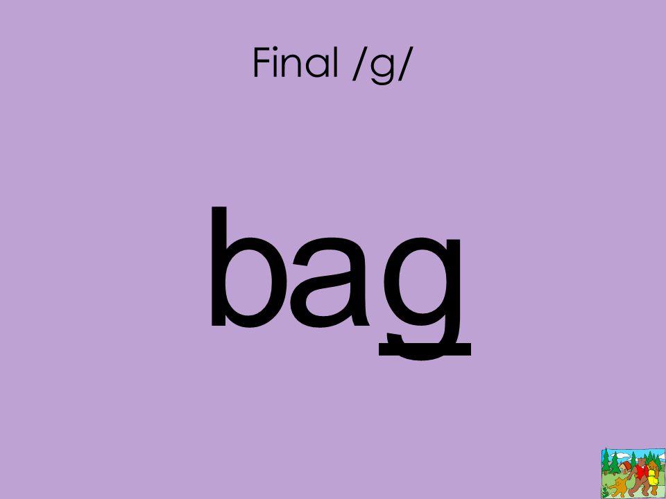Final /g/ bag