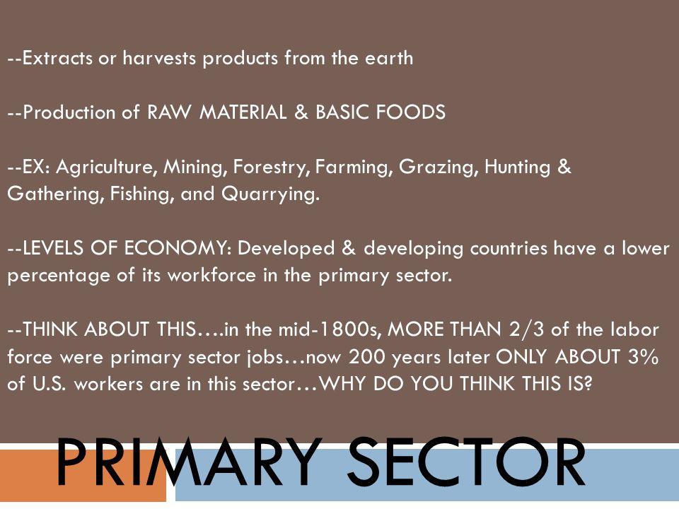 PRIMARY SECTOR --Extracts or harvests products from the earth --Production of RAW MATERIAL & BASIC FOODS --EX: Agriculture, Mining, Forestry, Farming,