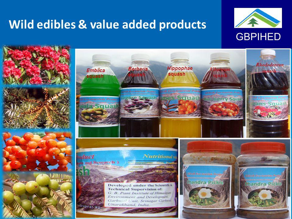 GBPIHED Wild edibles & value added products Emblica squash Berberis squash Hippophae squash Vibarnum squash Rhododenron squash