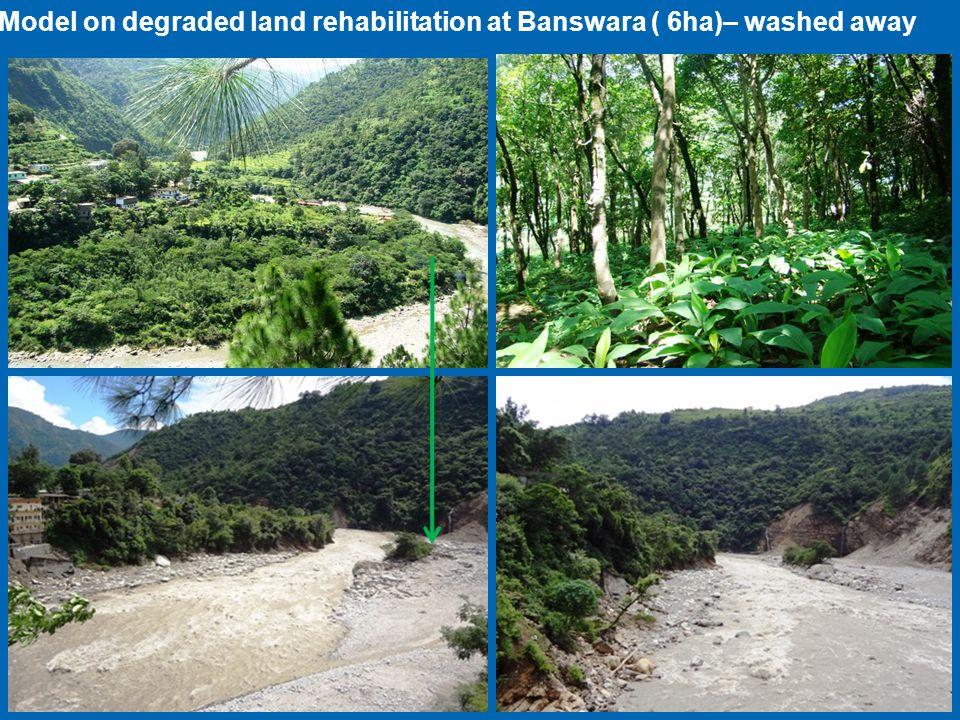 Model on degraded land rehabilitation at Banswara ( 6ha)– washed away