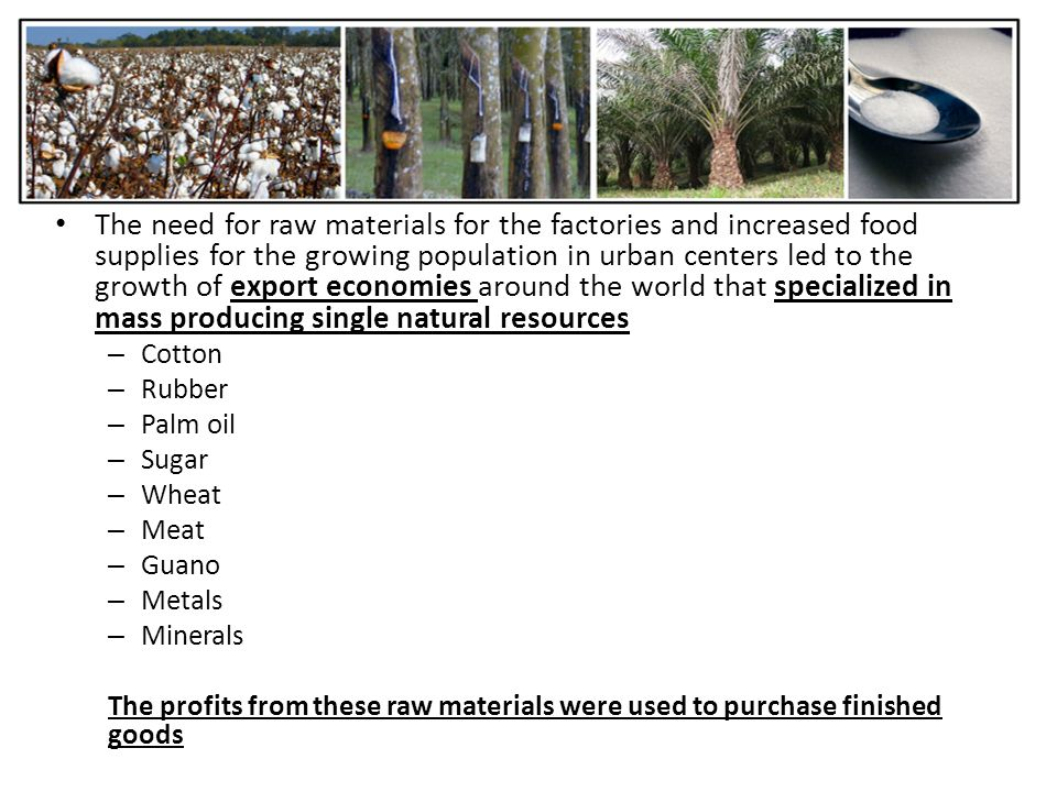 The need for raw materials for the factories and increased food supplies for the growing population in urban centers led to the growth of export economies around the world that specialized in mass producing single natural resources – Cotton – Rubber – Palm oil – Sugar – Wheat – Meat – Guano – Metals – Minerals The profits from these raw materials were used to purchase finished goods