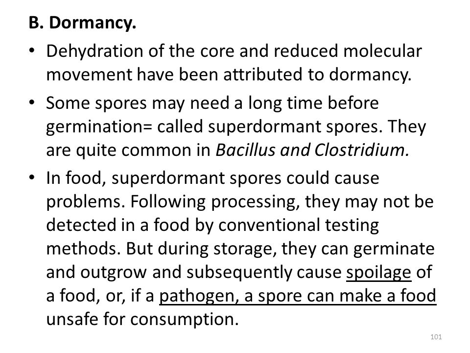 B. Dormancy. Dehydration of the core and reduced molecular movement have been attributed to dormancy. Some spores may need a long time before germinat