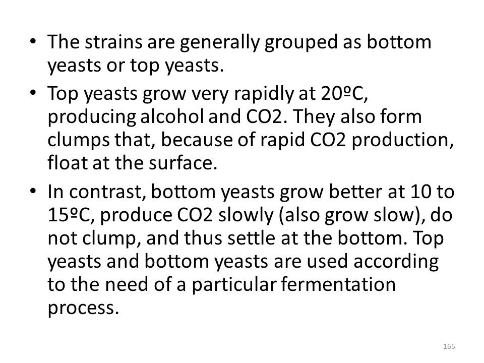 The strains are generally grouped as bottom yeasts or top yeasts. Top yeasts grow very rapidly at 20ºC, producing alcohol and CO2. They also form clum
