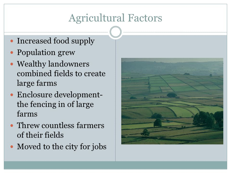 Agricultural Factors Increased food supply Population grew Wealthy landowners combined fields to create large farms Enclosure development- the fencing