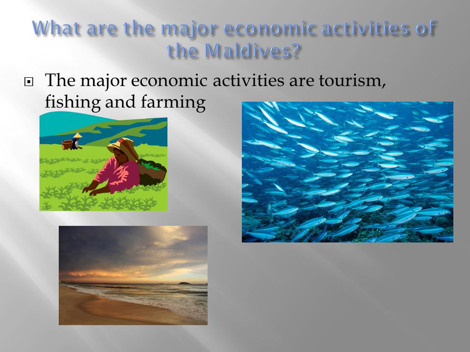  The major economic activities are tourism, fishing and farming
