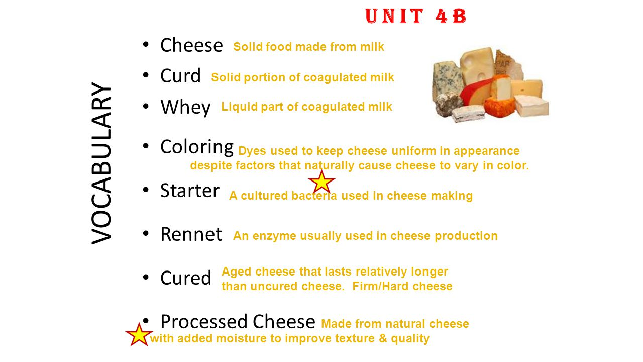 VOCABULARY Cheese Curd Whey Coloring Starter Rennet Cured Processed Cheese UNIT 4B Solid portion of coagulated milk Liquid part of coagulated milk Aged cheese that lasts relatively longer than uncured cheese.
