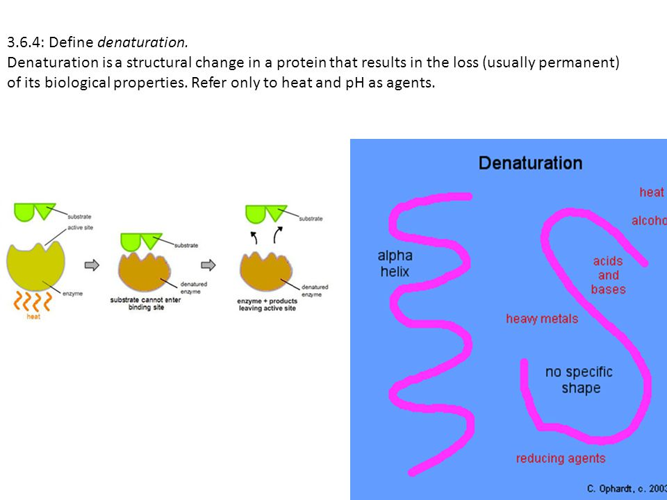 3.6.4: Define denaturation. Denaturation is a structural change in a protein that results in the loss (usually permanent) of its biological properties