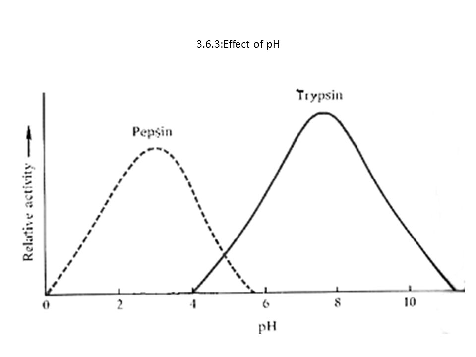 3.6.3:Effect of pH