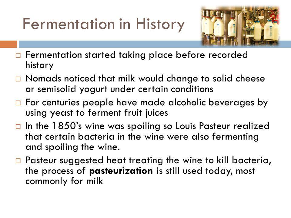 Fermentation in History  Fermentation started taking place before recorded history  Nomads noticed that milk would change to solid cheese or semisol