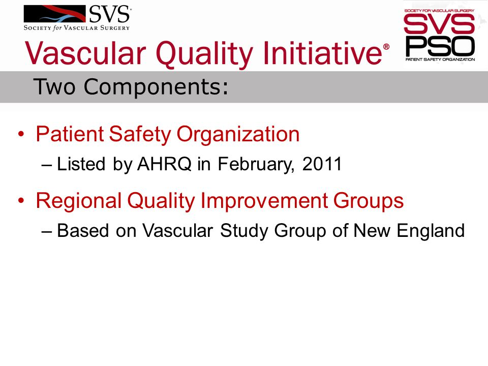 Patient Safety Organization –Listed by AHRQ in February, 2011 Regional Quality Improvement Groups –Based on Vascular Study Group of New England Two Co