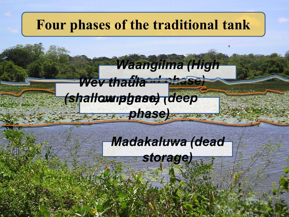 Four phases of the traditional tank Madakaluwa (dead storage) Jalagilma (deep phase) Waangilma (High flood phase) Wev thaula (shallow phase)