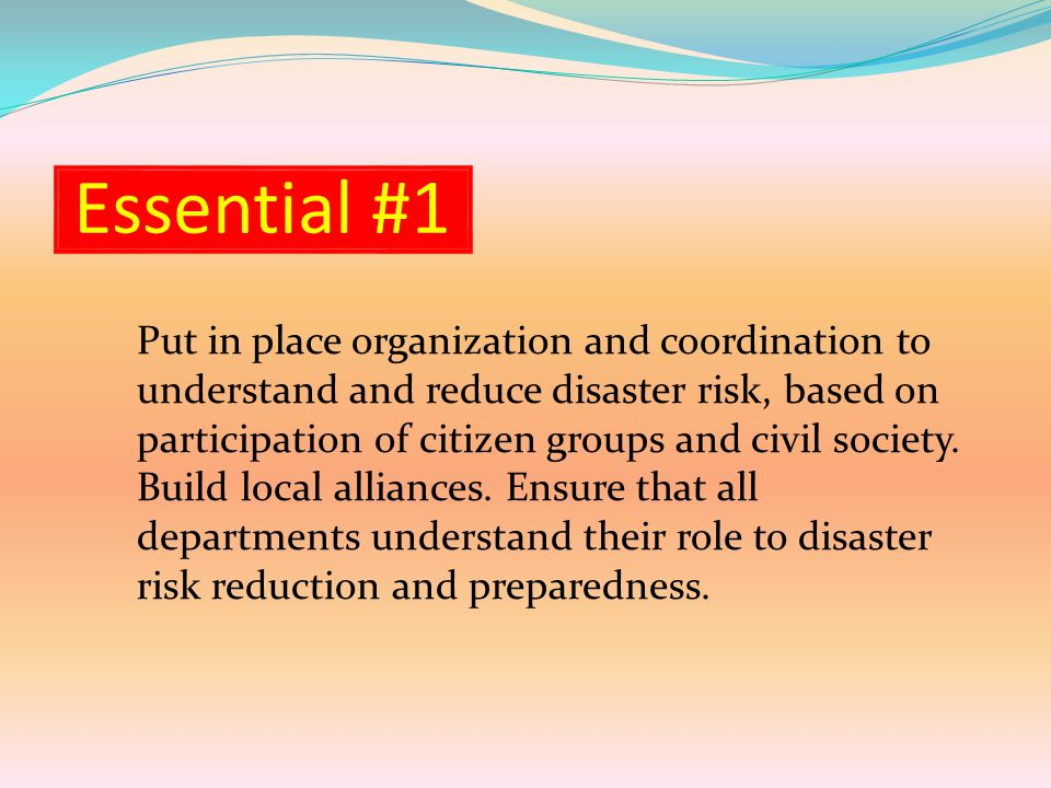 Essential #1 Put in place organization and coordination to understand and reduce disaster risk, based on participation of citizen groups and civil society.