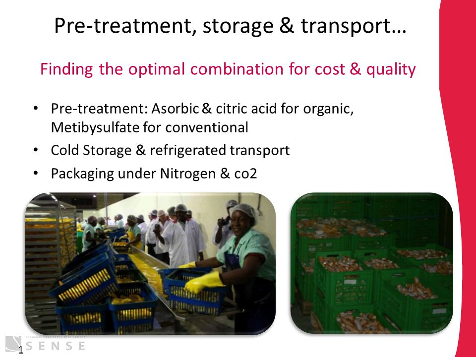 Pre-treatment, storage & transport… Pre-treatment: Asorbic & citric acid for organic, Metibysulfate for conventional Cold Storage & refrigerated trans