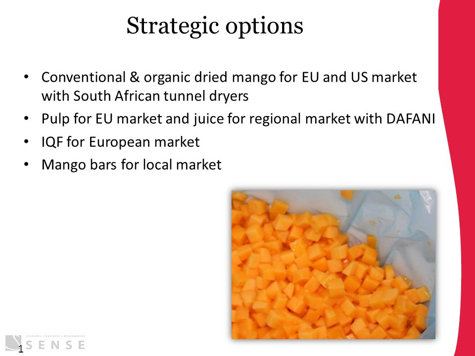 Strategic options Conventional & organic dried mango for EU and US market with South African tunnel dryers Pulp for EU market and juice for regional m