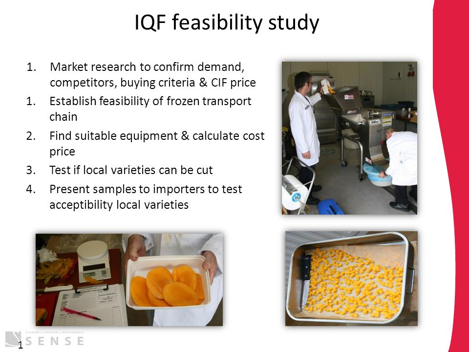 IQF feasibility study 1.Market research to confirm demand, competitors, buying criteria & CIF price 1.Establish feasibility of frozen transport chain