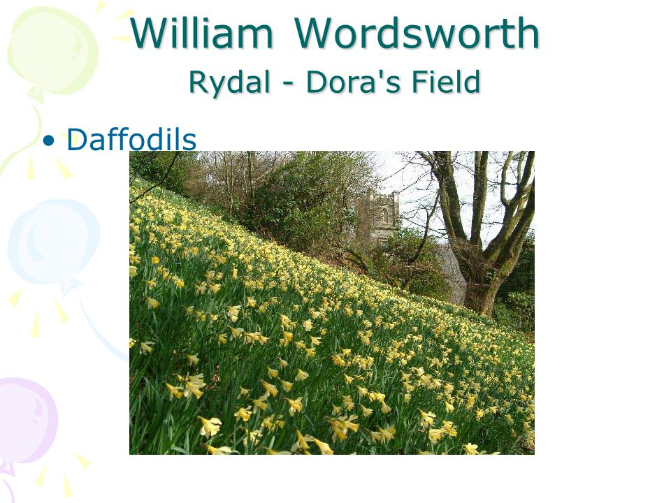 William Wordsworth Rydal - Dora s Field Daffodils