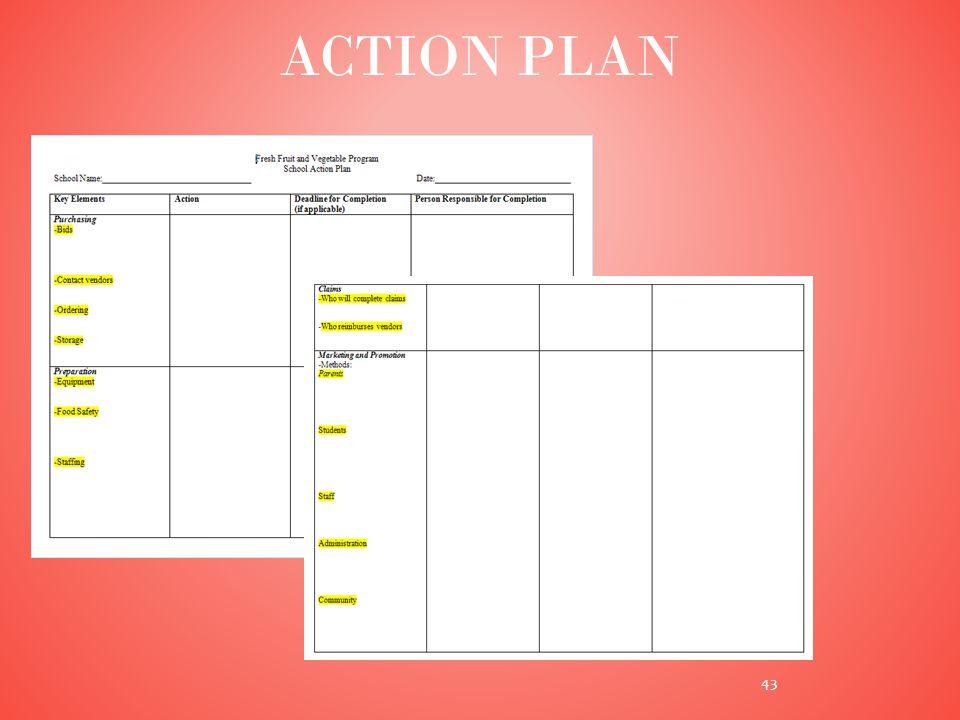ACTION PLAN 43