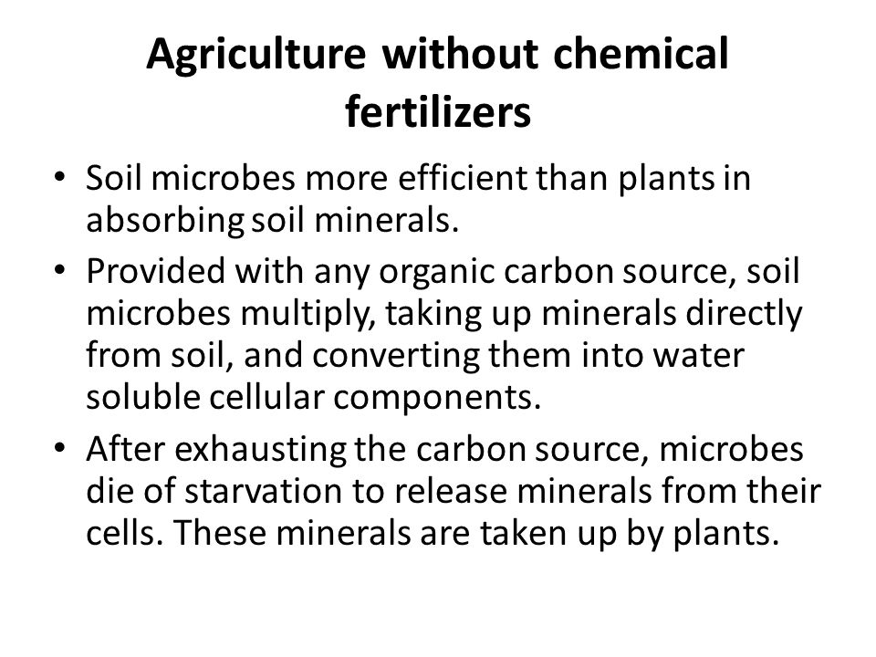 Agriculture without chemical fertilizers Soil microbes more efficient than plants in absorbing soil minerals.