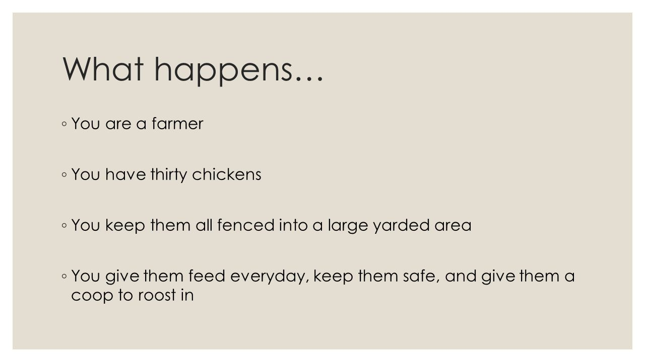 What happens… ◦ You are a farmer ◦ You have thirty chickens ◦ You keep them all fenced into a large yarded area ◦ You give them feed everyday, keep th