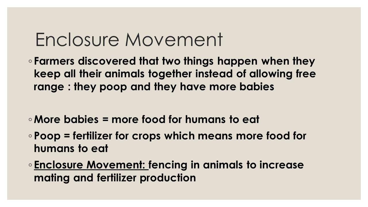 Enclosure Movement ◦ Farmers discovered that two things happen when they keep all their animals together instead of allowing free range : they poop an