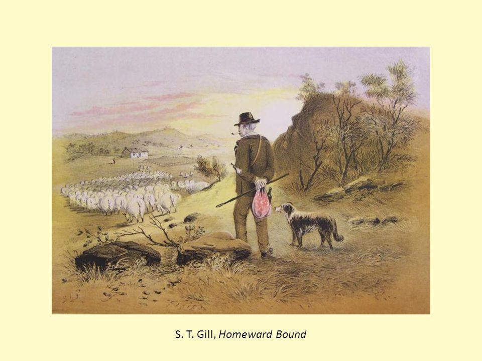 S. T. Gill, Homeward Bound