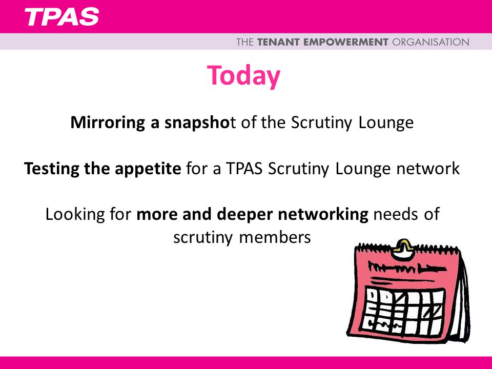 Today Mirroring a snapshot of the Scrutiny Lounge Testing the appetite for a TPAS Scrutiny Lounge network Looking for more and deeper networking needs of scrutiny members