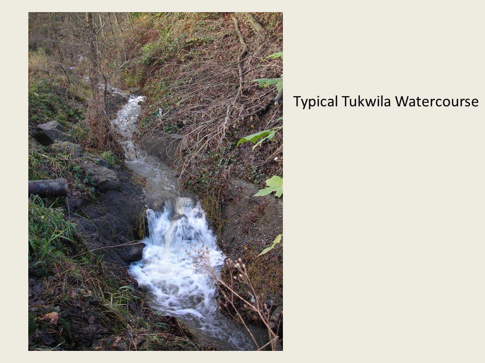 Typical Tukwila Watercourse