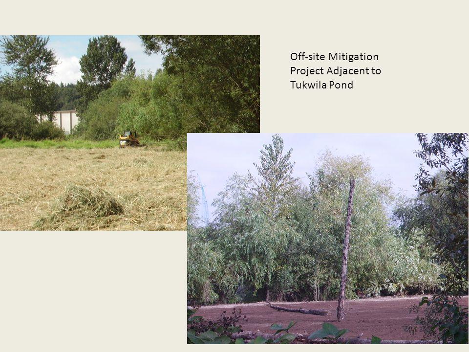 Off-site Mitigation Project Adjacent to Tukwila Pond