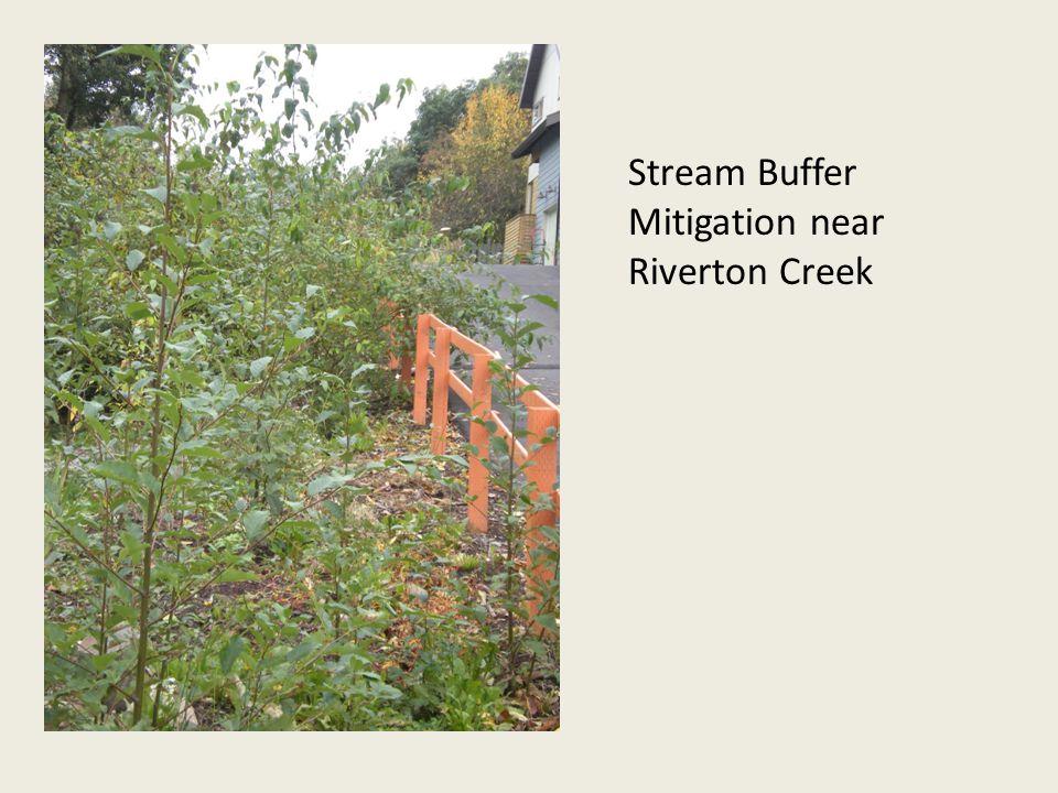 Stream Buffer Mitigation near Riverton Creek
