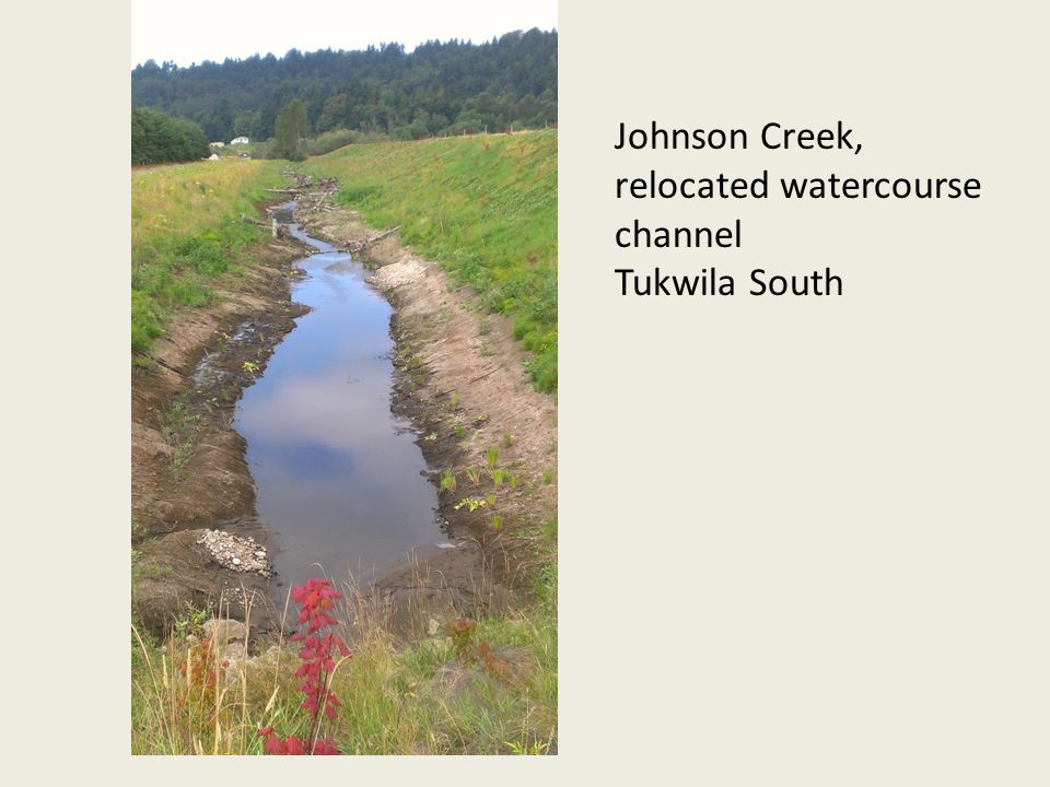 Johnson Creek, relocated watercourse channel Tukwila South