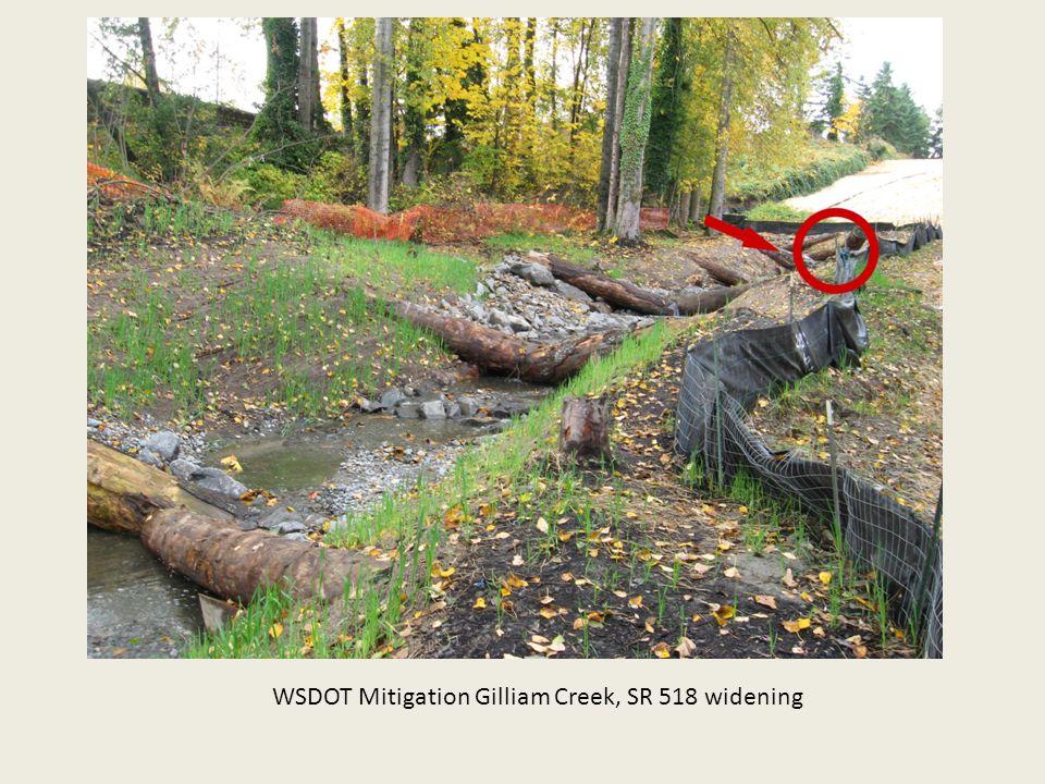 WSDOT Mitigation Gilliam Creek, SR 518 widening