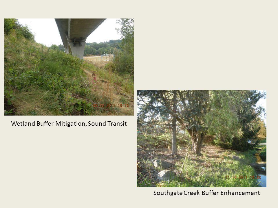 Wetland Buffer Mitigation, Sound Transit Southgate Creek Buffer Enhancement