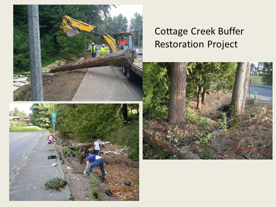 Cottage Creek Buffer Restoration Project