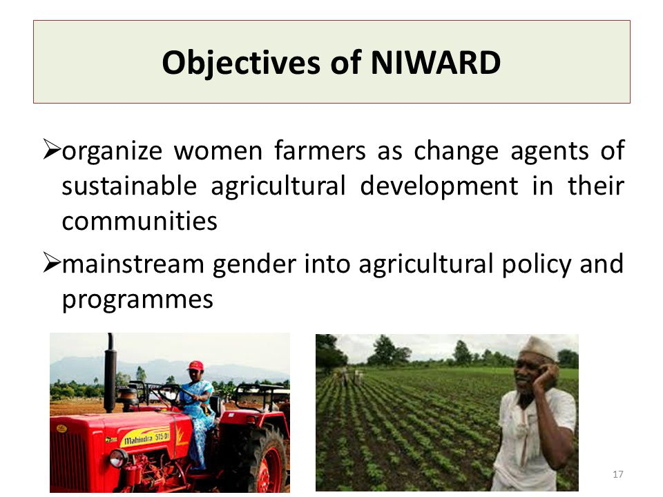 Objectives of NIWARD  organize women farmers as change agents of sustainable agricultural development in their communities  mainstream gender into agricultural policy and programmes 17