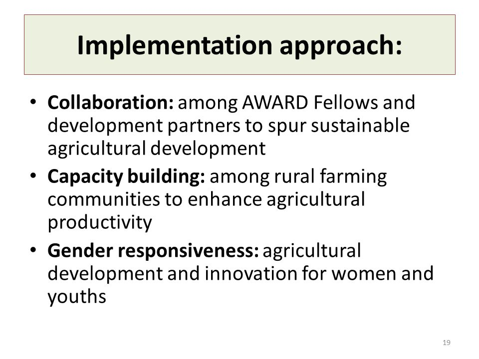 Implementation approach: Collaboration: among AWARD Fellows and development partners to spur sustainable agricultural development Capacity building: among rural farming communities to enhance agricultural productivity Gender responsiveness: agricultural development and innovation for women and youths 19