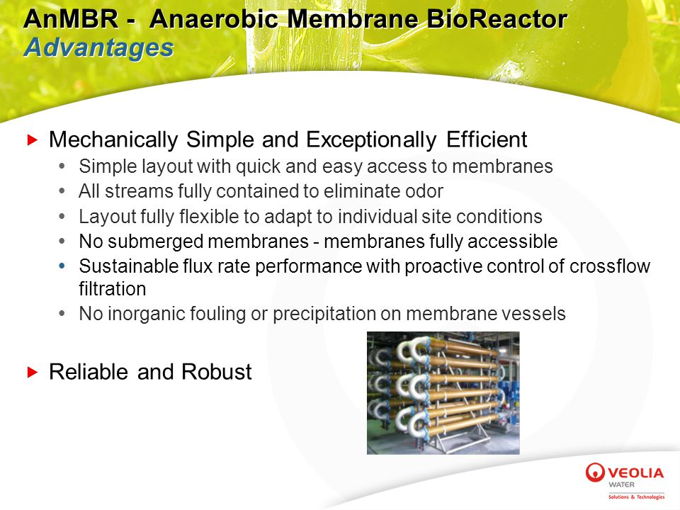  A generic AnMBR layout is illustrated above and exemplifies the following:  System blends with existing facilities  Layout fully flexible to adapt to individual site conditions  No submerged membranes; membranes fully accessible  No system shutdown required to repair, replace or maintain membranes  Shop fabrication leads to increased schedule efficiency System Layout