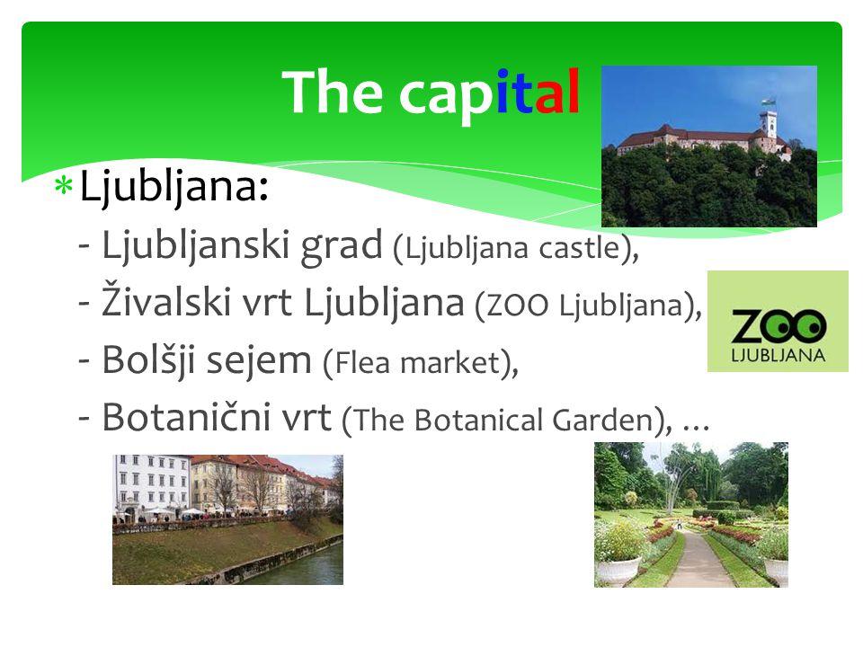  Ljubljana: - Ljubljanski grad (Ljubljana castle), - Živalski vrt Ljubljana (ZOO Ljubljana), - Bolšji sejem (Flea market), - Botanični vrt (The Botanical Garden), … The capital
