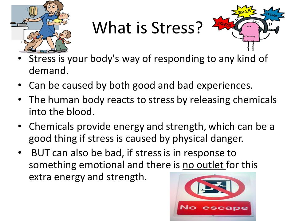 What is Stress. Stress is your body s way of responding to any kind of demand.