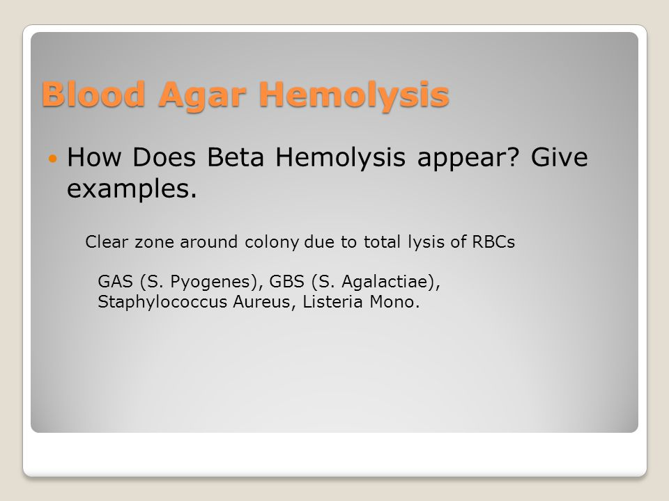 Blood Agar Hemolysis How Does Beta Hemolysis appear.