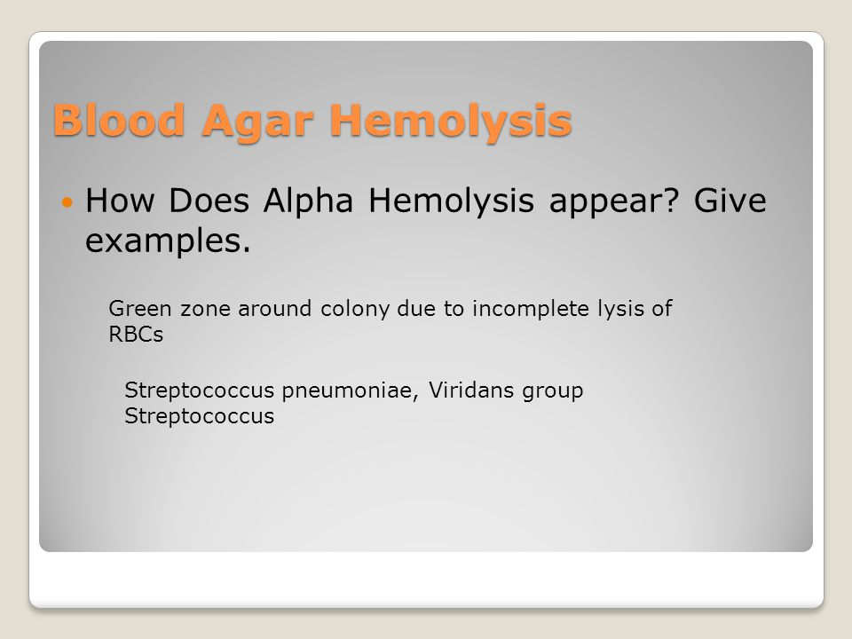 Blood Agar Hemolysis How Does Alpha Hemolysis appear.