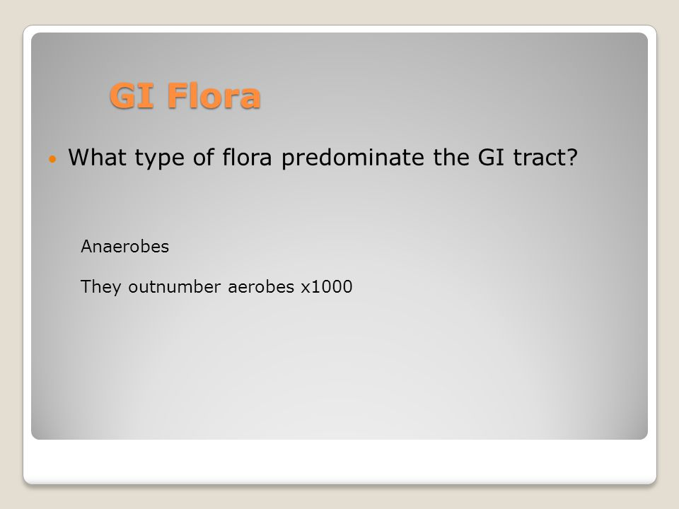 GI Flora What type of flora predominate the GI tract Anaerobes They outnumber aerobes x1000