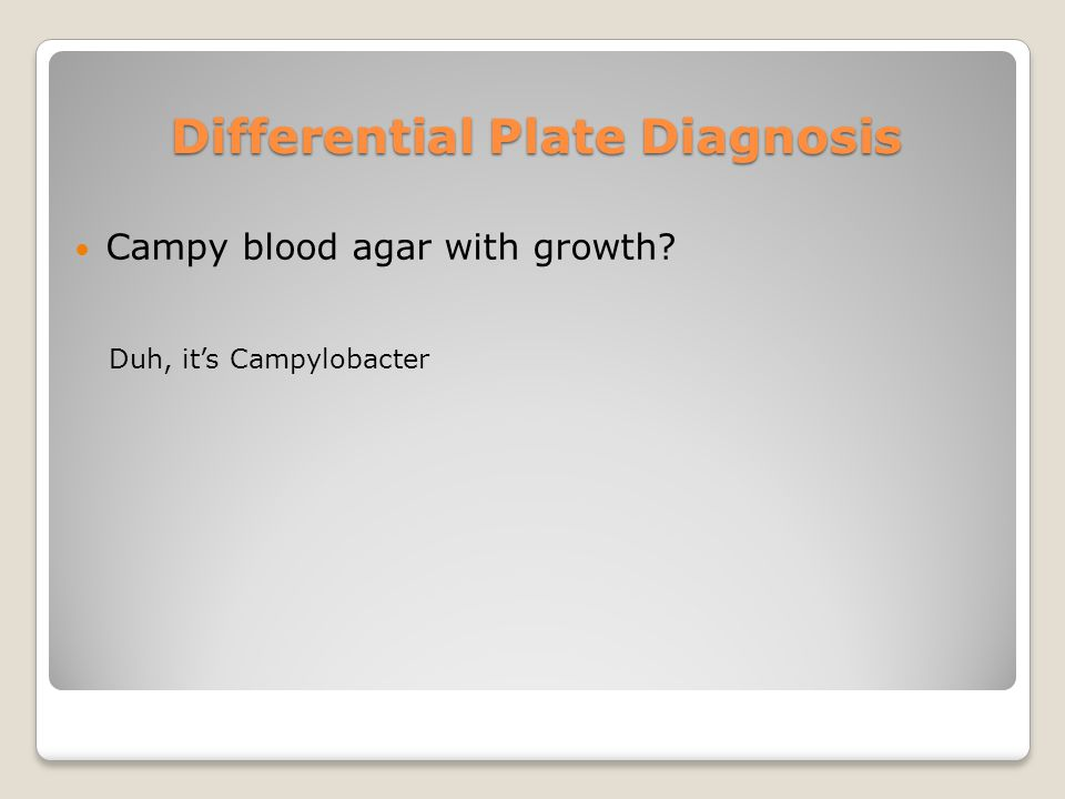 Differential Plate Diagnosis Campy blood agar with growth Duh, it's Campylobacter