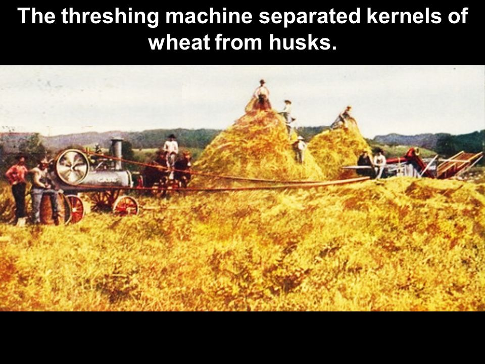 The threshing machine separated kernels of wheat from husks.