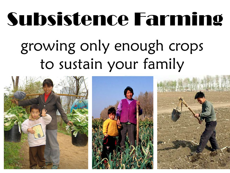 Subsistence Farming growing only enough crops to sustain your family