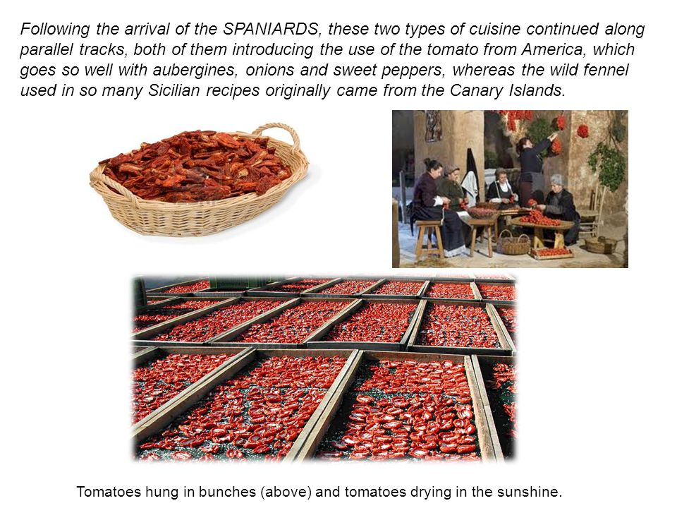 Following the arrival of the SPANIARDS, these two types of cuisine continued along parallel tracks, both of them introducing the use of the tomato from America, which goes so well with aubergines, onions and sweet peppers, whereas the wild fennel used in so many Sicilian recipes originally came from the Canary Islands.